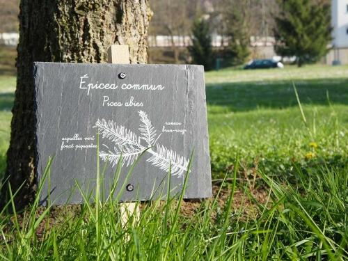 Arboretum de Collonges-au-Mont-d'Or